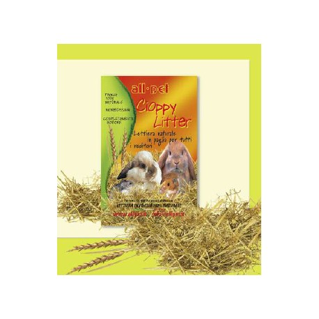 All-pet Cioppy Litter 1Kg