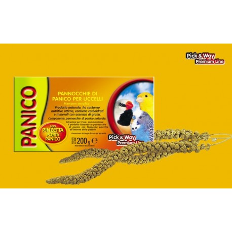 All-Pet Panico